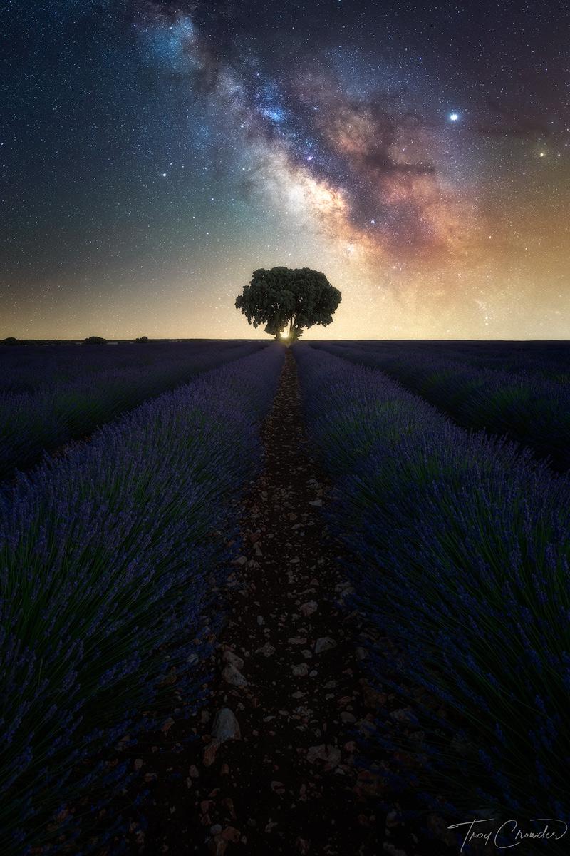 Milky Way, galaxy, brihuega spain, brihuega, lavender fields, lavender, photo